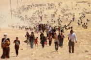 yazidis-fleeing-sinjar