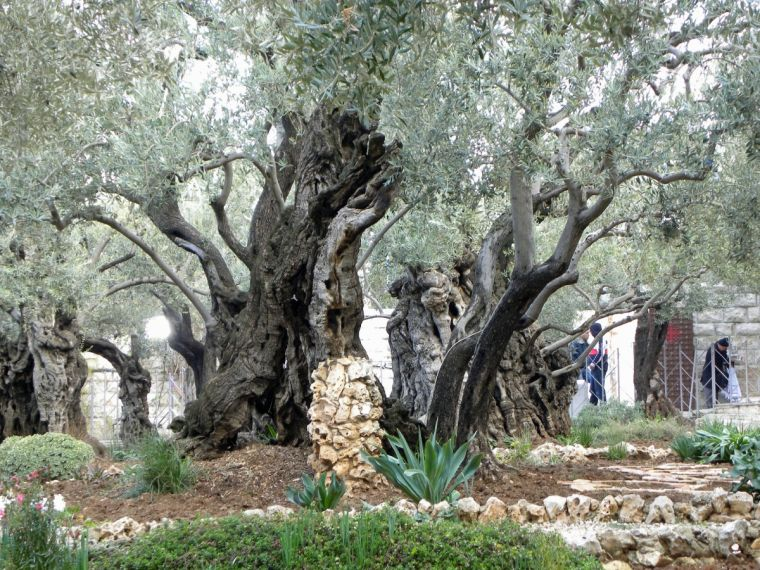 10 Great Pictures Of The Holy Land Christian News On Christian Today